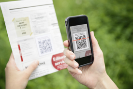 QR Code Basics for Local Businesses